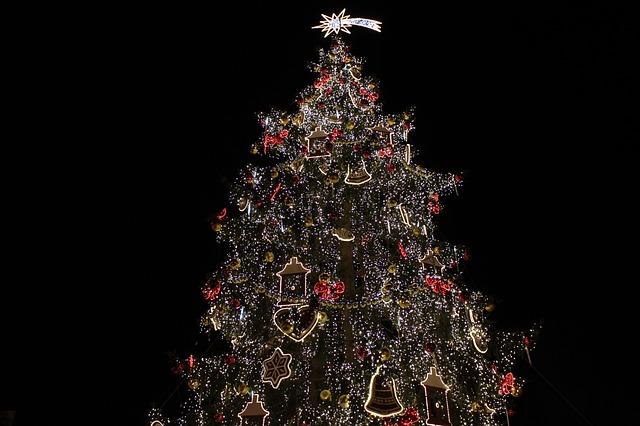 Vánoční strom venku